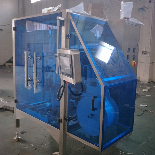 zipper bag form fill seal machine real picture